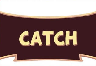 woRdPlaying.cards | Catch